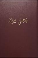 Sorani Kurdish New Testament. (Flexiback)