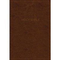 KJV Know The Word Study Bible, Brown, Red Letter Ed. (Imitation Leather)