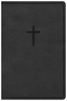 KJV Everyday Study Bible, Charcoal LeatherTouch (Imitation Leather)