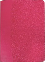 Everyday Life Amplified Bible, Pink