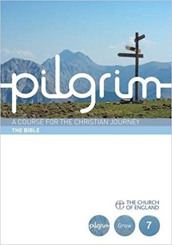 Pilgrim Book 7: The Bible (Pack of 25)