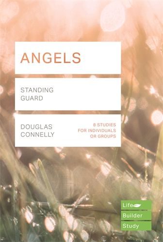 Lifebuilder: Angels