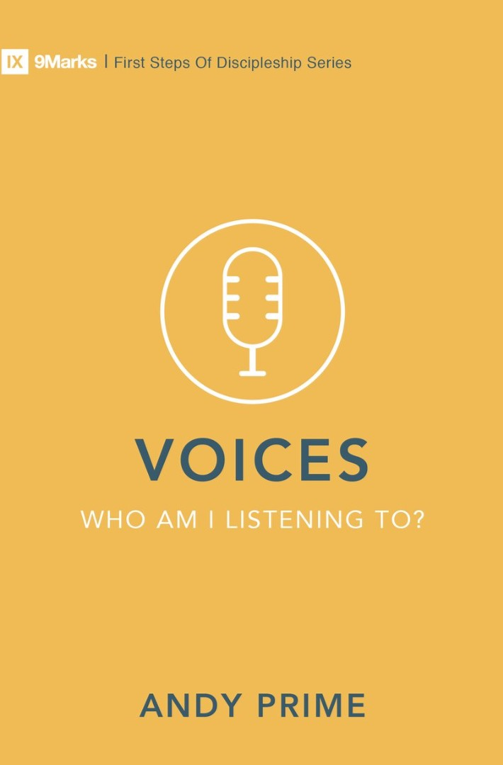 Voices - Who Am I Listening To?