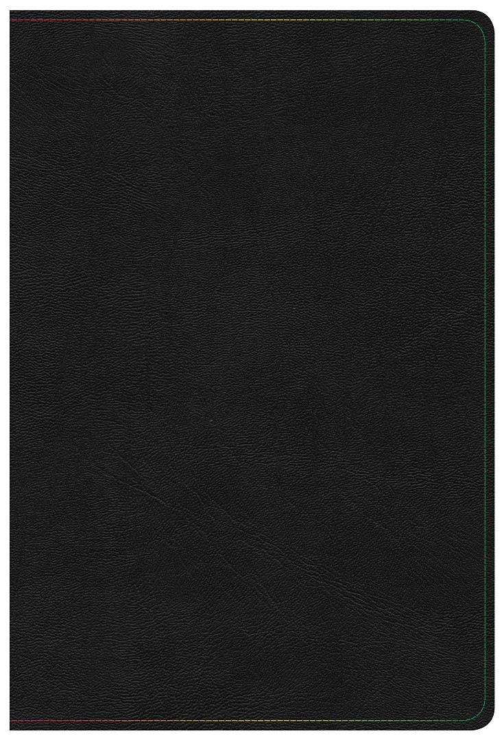 KJV Rainbow Study Bible, Black LeatherTouch