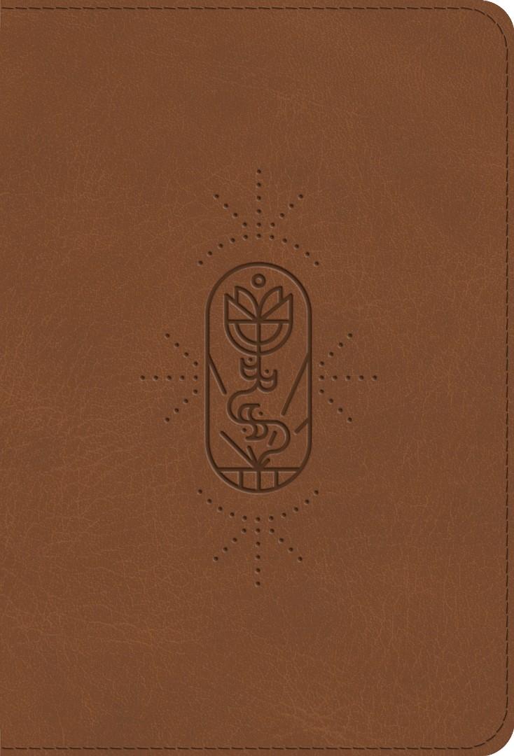 ESV Kid's Bible, Compact, TruTone, The True Vine