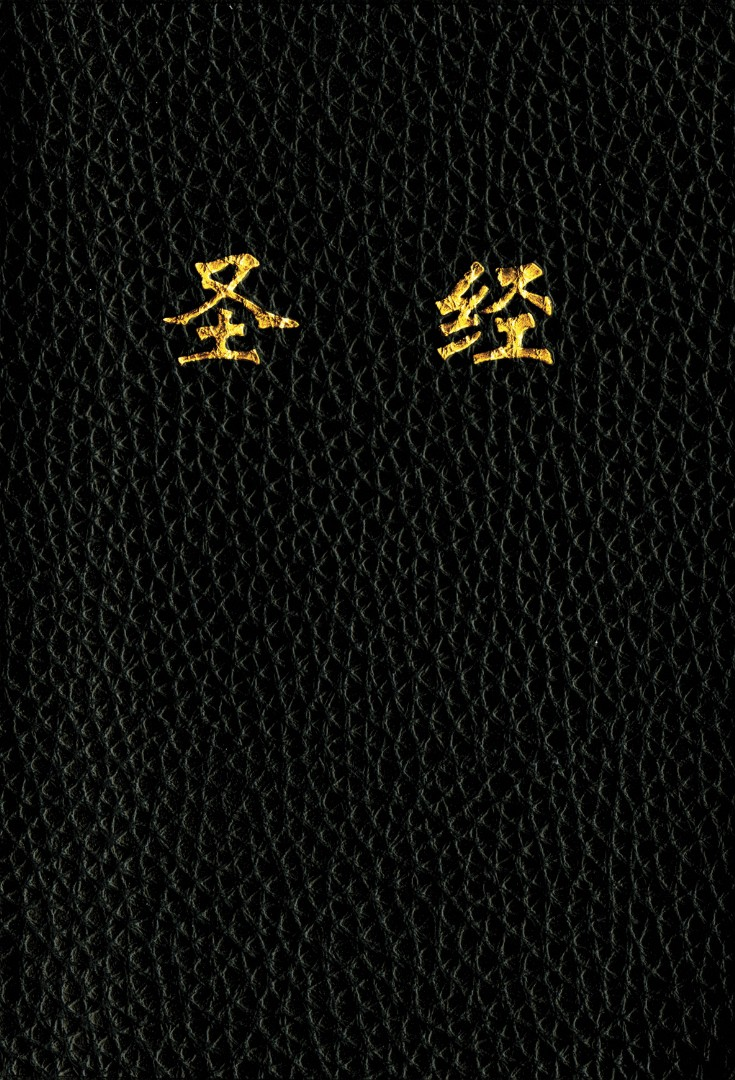 CUV Holy Bible Chinese Text Edition