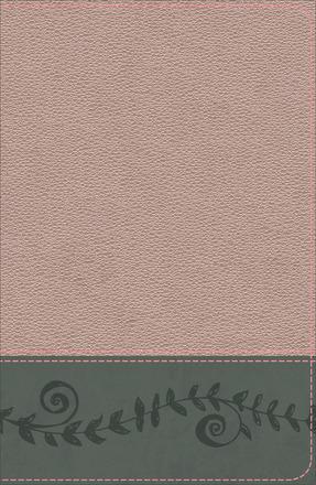 KJV Study Bible for Girls, Pink Pearl/Gray