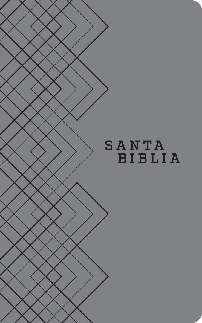 Santa Biblia NTV, Edición ágape (SentiPiel, Gris),