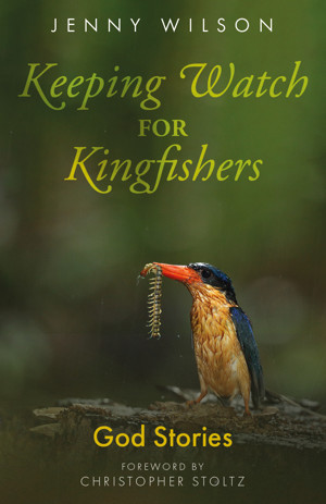 Keeping Watch for Kingfishers