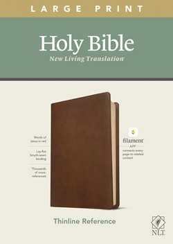 NLT Large Print Thinline Reference Bible, Filament Edition
