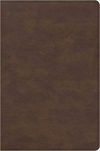 CSB Seven Arrows Bible, Brown LeatherTouch