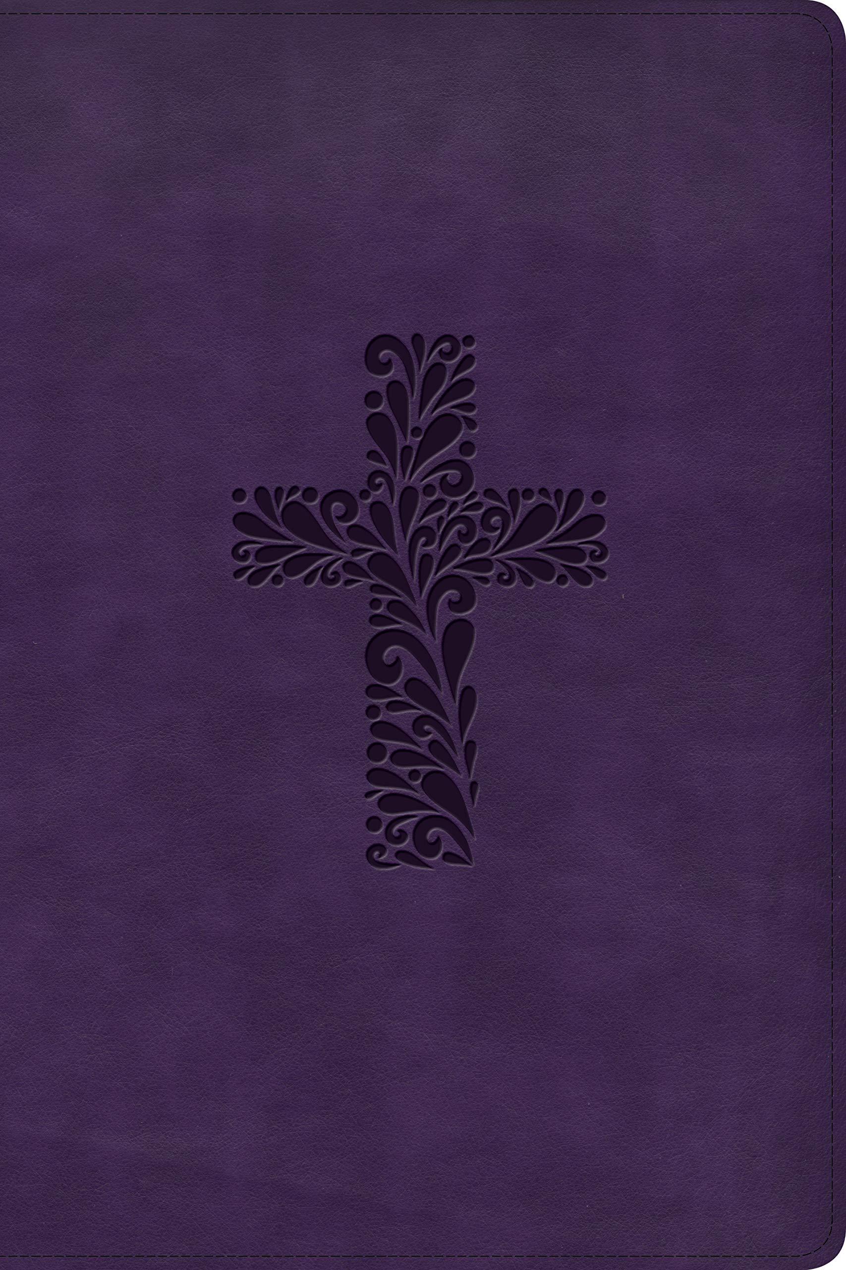 KJV Rainbow Study Bible, Purple LeatherTouch