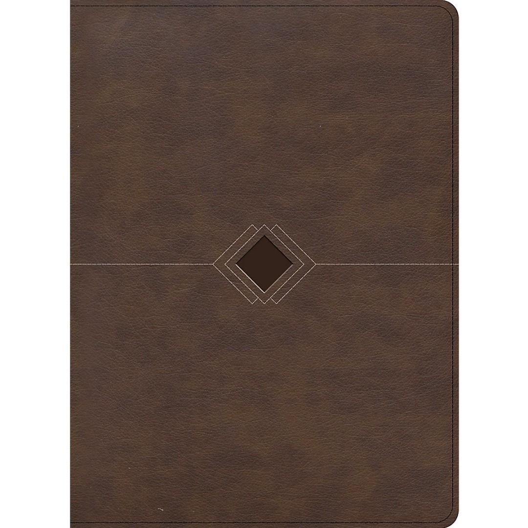 RVR 1960 Biblia Cronológica, Día a Día, Marrón Símil Piel