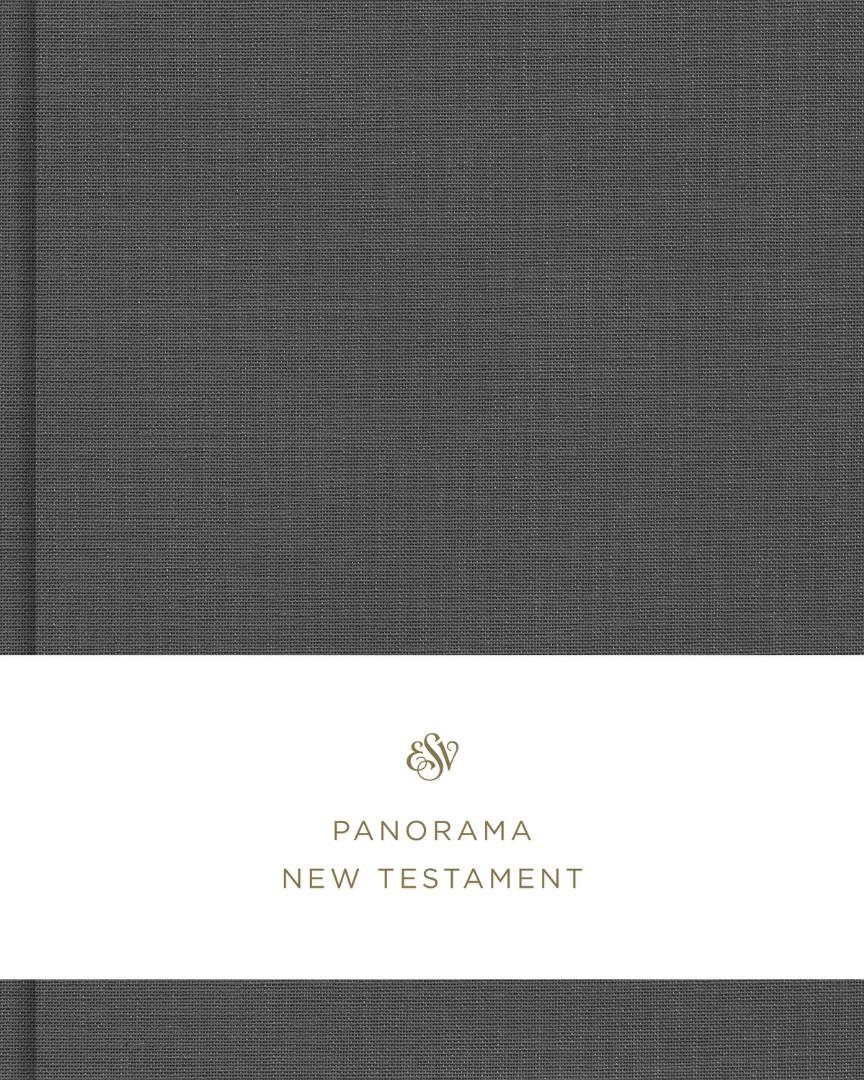 ESV Panorama New Testament, Gray Cloth over Board