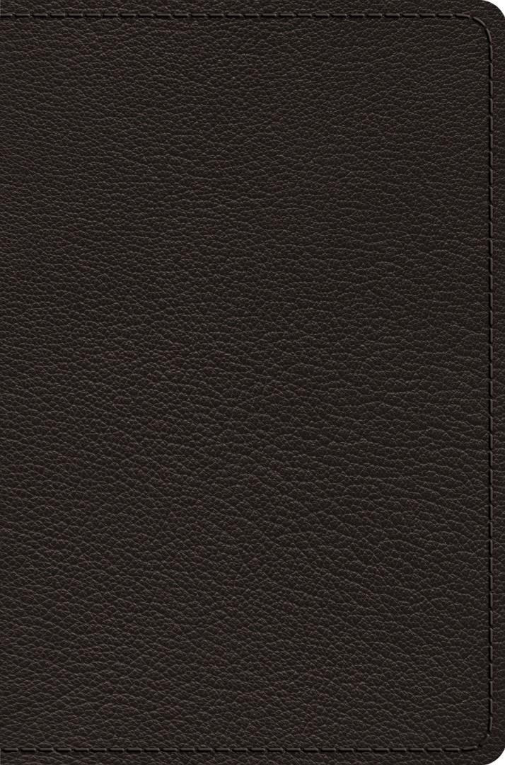 ESV Preaching Bible, Verse-by-Verse Edition, Black Goatskin