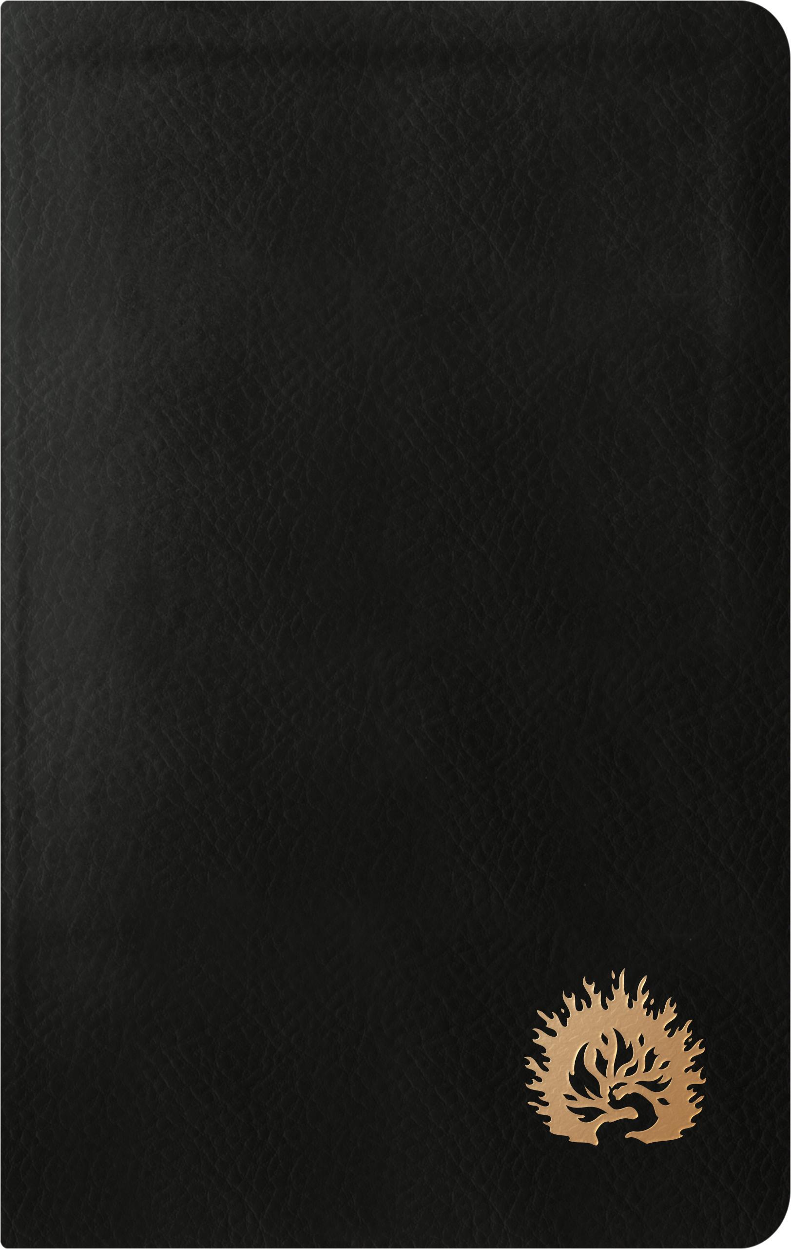 ESV Reformation Study Bible, Condensed Edition, Black