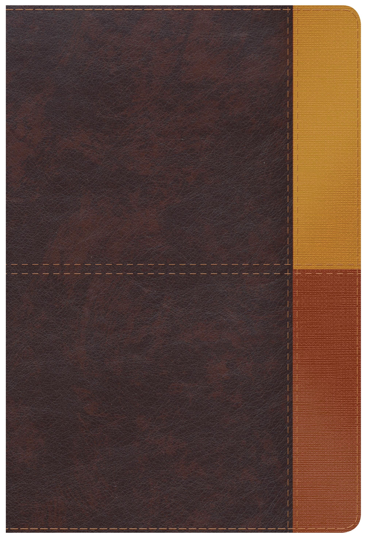 RVR 1960 Biblia de Estudio Arcoiris, gris pizarra/oliva sími