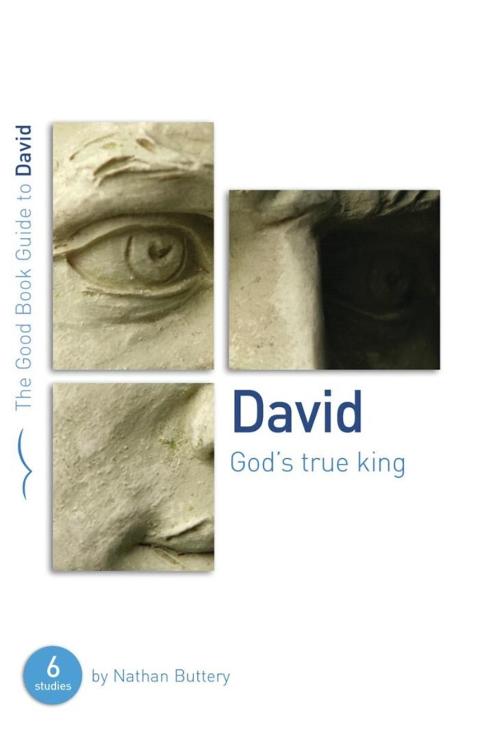 David: God's True King (Good Book Guide)