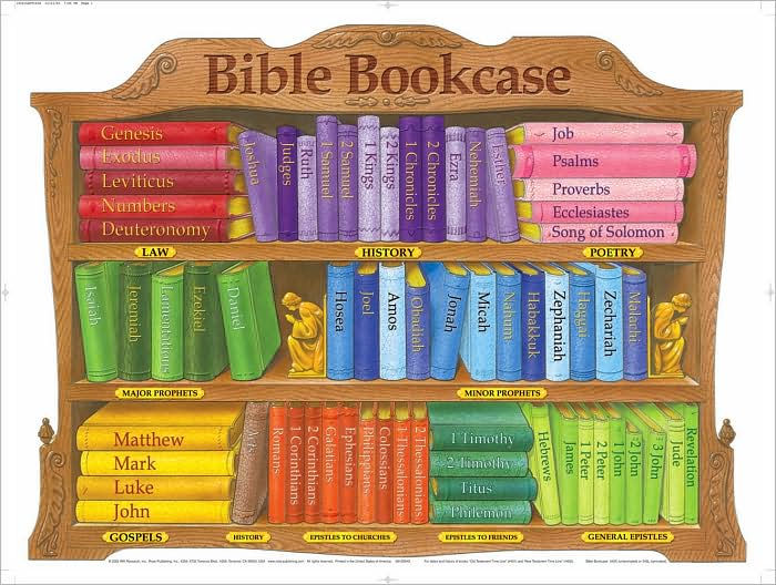 Bible Bookcase Chart (Laminated)  20x26