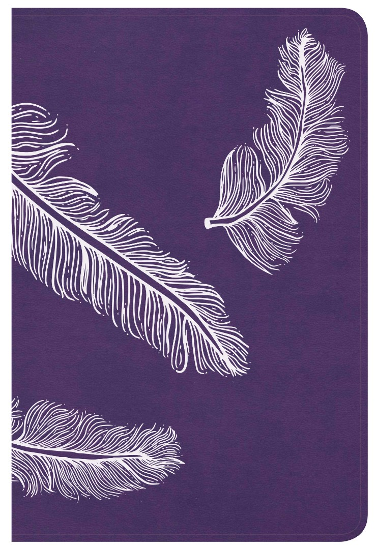 CSB Compact Ultrathin Bible For Teens, Plum Feathers