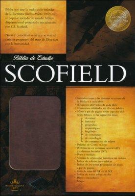RVR 1960 Biblia de Estudio Scofield, chocolate imitación pie