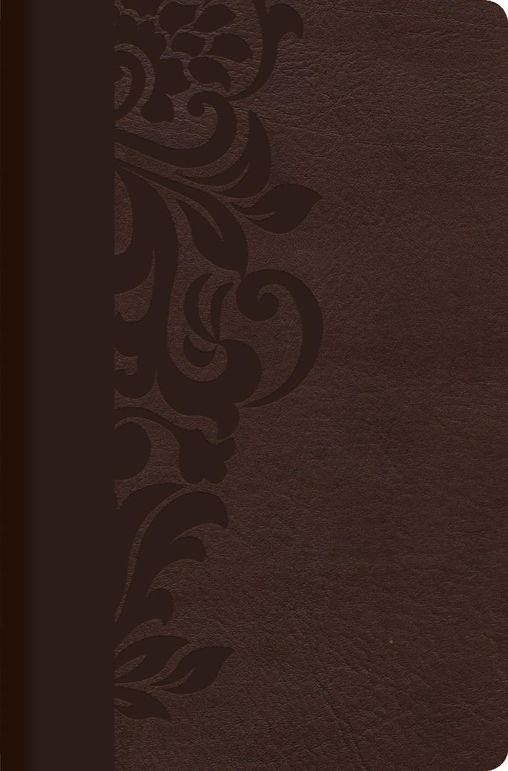 RVR 1960 Biblia de Estudio para Mujeres, café símil piel