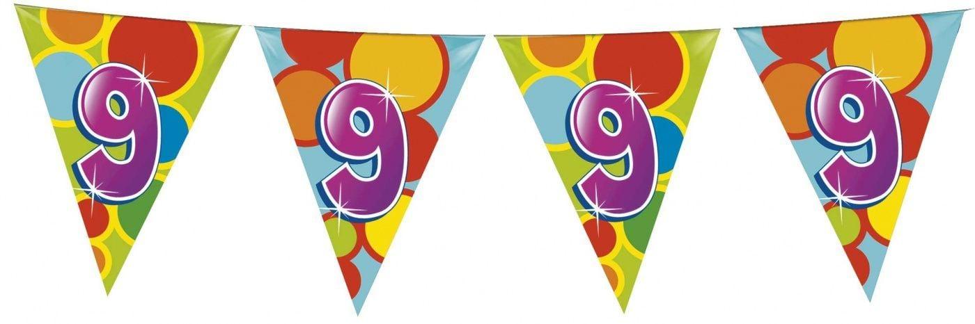 Vlaggenlijn leeftijd 9 jaar 10 meter