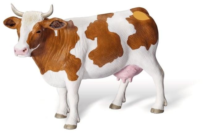 Ravensburger Tiptoi® Roodbonte koe