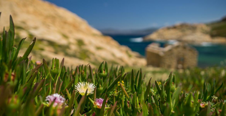Campings en Corse