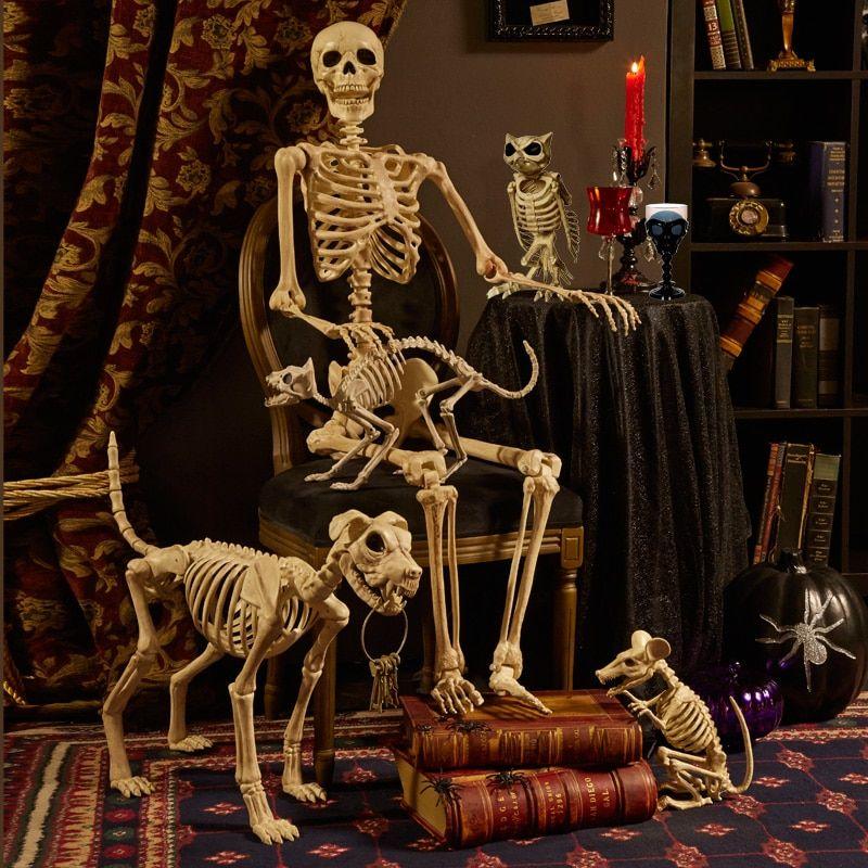 Christmas Skeleton.Details About Horror Halloween Skeleton Animal Plastic Bones Christmas Prop Crow Decorations
