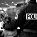 mini_dixie