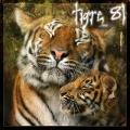 tigre 81