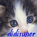 didisuper