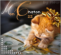 mon chaton22