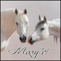 mary34