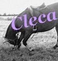 cleca