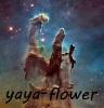 yaya-flower