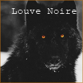 louve noire