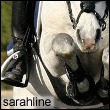sarahline