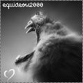 equideow2000