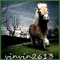 vinvin2613