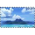 ping60