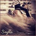 saylla