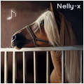 nelly-x