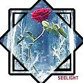 seblight