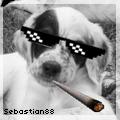 sebastian88