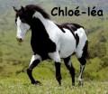 chloé-léa