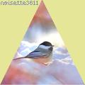 noisette3611