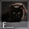 ebenlove