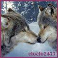 cloclo2433